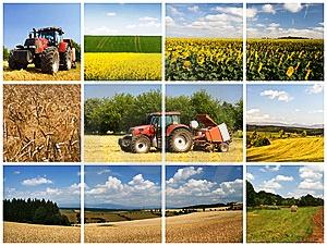 Image result for کشاورزی اذربایجان شرقی