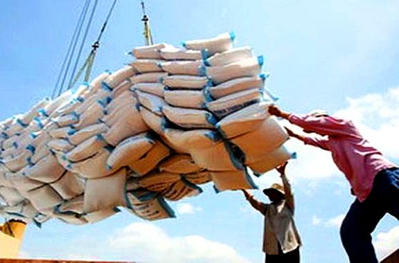 Image result for واردات برنج